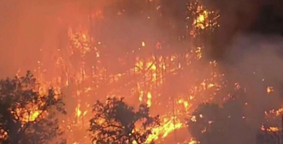 Insurance Adjusters Under Fire After Cheating California Wildfire Victims